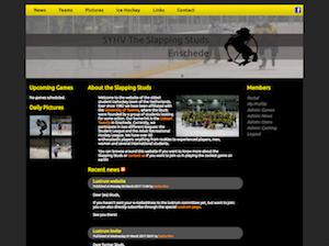 Website 2010
